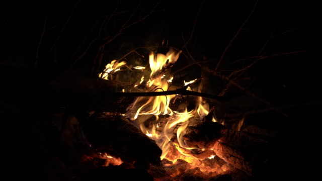 close up uhd video of campfire of bonfire in nature during night - selimaksan stock videos & royalty-free footage