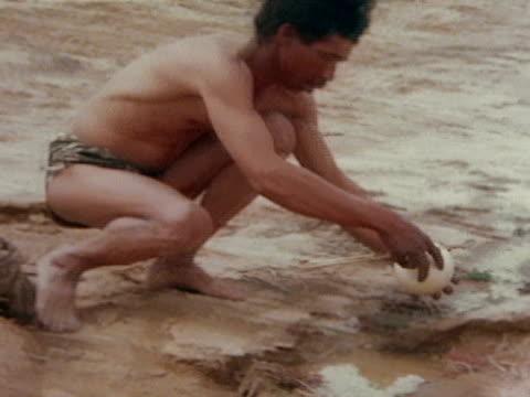 vídeos de stock, filmes e b-roll de close up - deserto de kalahari