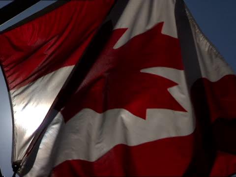 vídeos de stock e filmes b-roll de close up - bandeira do canadá