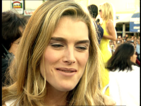 close up - brooke shields stock videos and b-roll footage