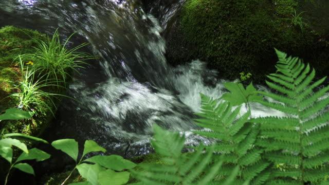 close up water stream