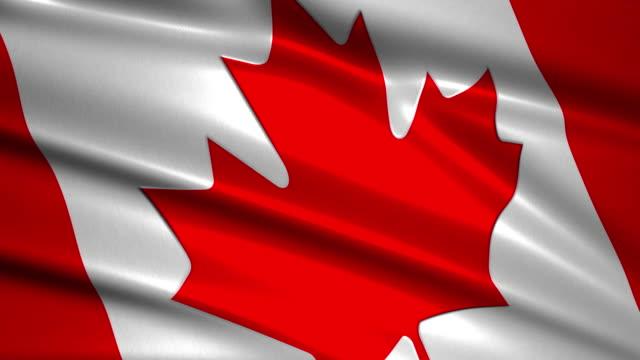 close up waving flag of Canada,loopable