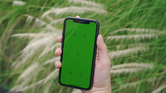 nahaufnahme frauenhände, die chroma-key-greenscreen-smartphone halten und inhalte ansehen. - content stock-videos und b-roll-filmmaterial