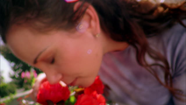 vídeos y material grabado en eventos de stock de close up woman smelling flowers on greenhouse terrace - pensamiento flor