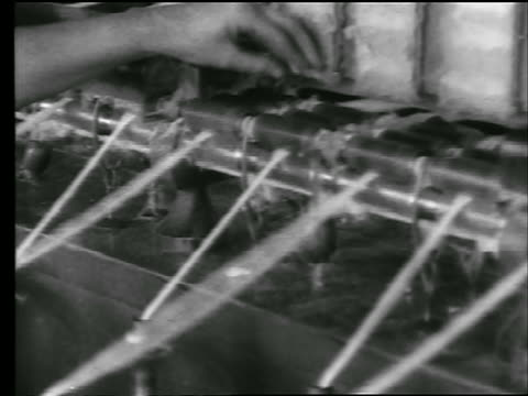 B/W 1922 close up woman's hand cleans spinning rollers with cotton thread on them in cotton mill / newsreel