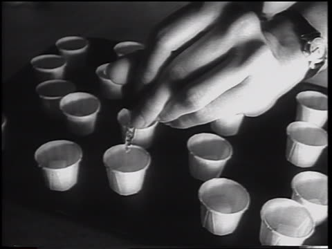 close up woman's hand using eyedropper to put oral polio vaccine into paper cups / newsreel - polio stock videos & royalty-free footage