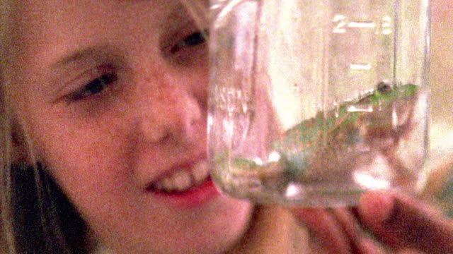 Close up young blonde freckled girl holding and looking at frog in jar / Missouri