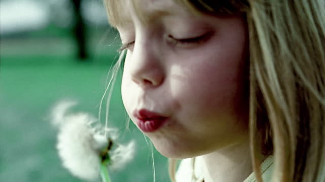 stockvideo's en b-roll-footage met close up young girl turning and blowing on seeds of dandelion flower - cross processen