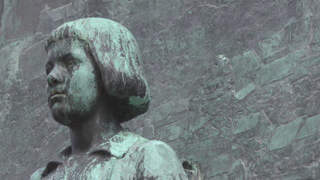 close up young martin luther head - 宗教的指導者 マルティン・ルター点の映像素材/bロール