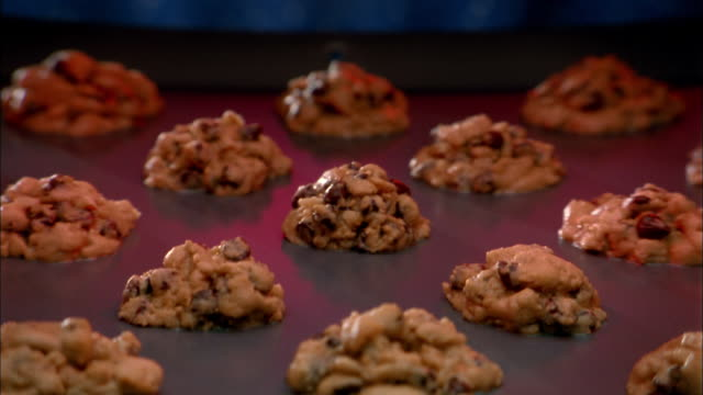 close up zoom in to time lapse cookies baking in oven and turning golden brown - クッキー点の映像素材/bロール