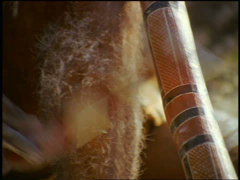 close up zoom out male aborigine playing didgeridoo + hitting it with boomerang / blue mountains, nsw, australia - ブーメラン点の映像素材/bロール
