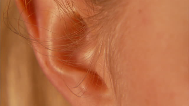 vídeos y material grabado en eventos de stock de close up_tilt-down tilt-up - a hole pierces a woman's ear.   - oreja