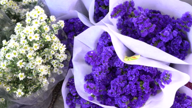 closer look of the fresh flowers for sale - brochure stock videos & royalty-free footage
