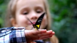 Close-up. A butterfly flutters its wings on the hand of a little girl. 4K Slow Mo