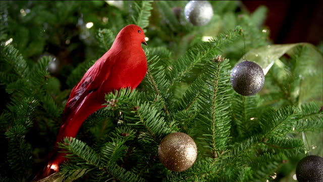 closeup an artificial red bird sits on a branch of a decorated christmas tree; hedge clippers enter frame and cut the branch. - gartengerät stock-videos und b-roll-filmmaterial