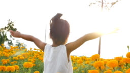 Close-up beauty girl extend the arms in golden floral landscape. Concept of happy childhood in springtime. Slowmotion video footage full HD 1920x1080. High speed camera shot 50 fps.