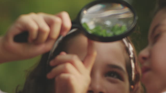 close-up beauty girl using magnifying - biology stock videos & royalty-free footage