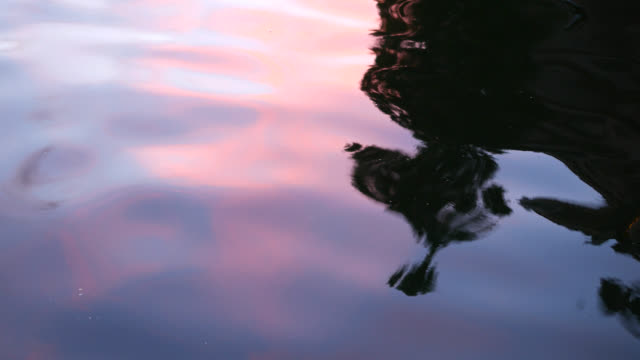 close-up calm water surface reflections - bay of water stock videos and b-roll footage