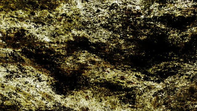 organic matter : close-up, dark (loop) - physical structure stock videos & royalty-free footage