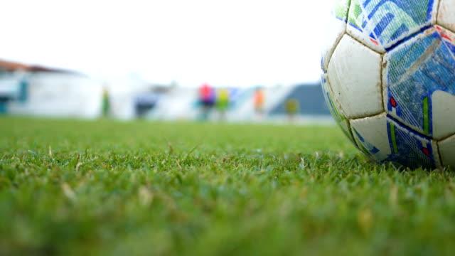 stockvideo's en b-roll-footage met close-up: voetbal grasveld. - dicht