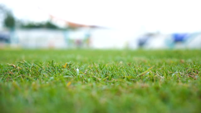 close-up: football grass field. - football pitch stock videos & royalty-free footage