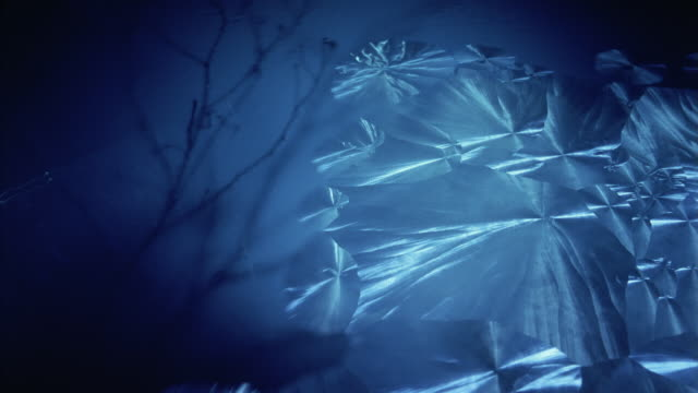 Close-up Frost forming in blue ice crystals in front of branches