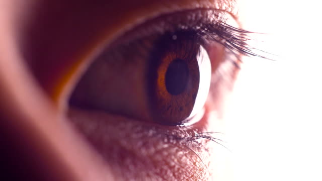close-up human eye - eyeball stock videos and b-roll footage