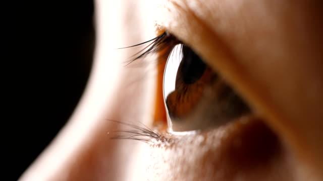 close-up human eye - retina stock videos & royalty-free footage