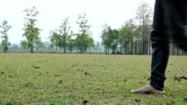 closeup human's legs walking on grass - human limb stock videos and b-roll footage