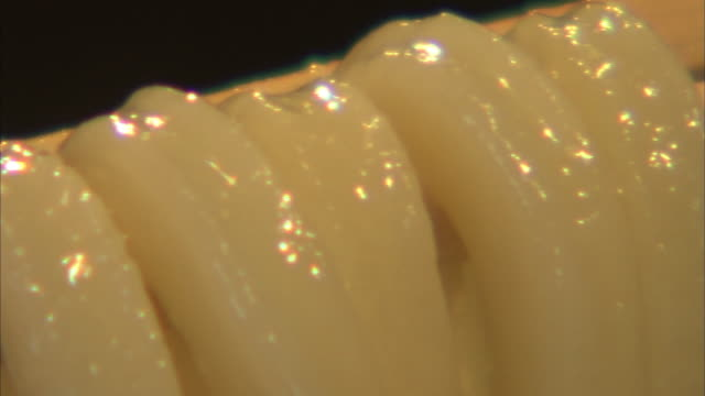 closeup; kake udon, wheat noodle with warm soup - noodles stock videos & royalty-free footage