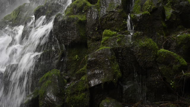 Close-up lockdown shot of water flowing through mossy rocks at Mt. Hood National Forest