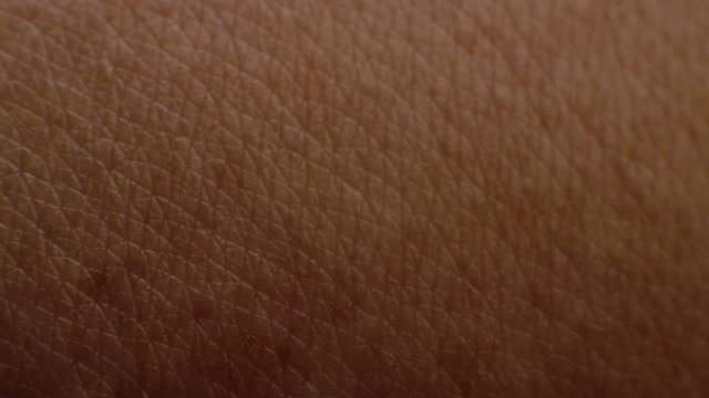 close-up macro of human skin - skin stock videos & royalty-free footage