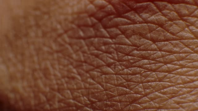 close-up macro of human skin - extreme close up stock videos & royalty-free footage