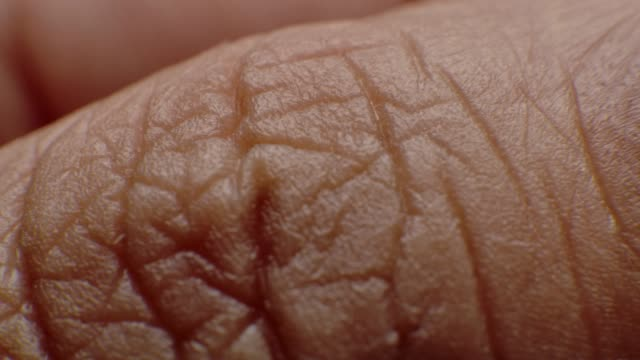 stockvideo's en b-roll-footage met close-up macro van duim vinger en spijker - extreme close up