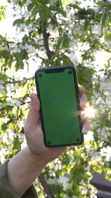 närbild manlig hand som håller smart telefon med grön skärm - människofinger bildbanksvideor och videomaterial från bakom kulisserna