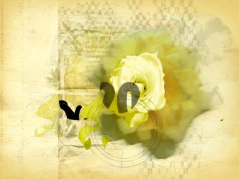 close-up of a blossoming flower - staubblatt stock-videos und b-roll-filmmaterial