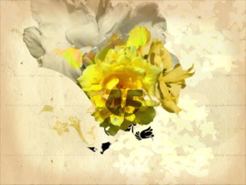 vidéos et rushes de close-up of a blossoming flower - étamine
