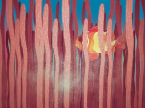 stockvideo's en b-roll-footage met close-up of a fish swimming underwater behind sea anemones - getal 9