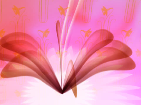vidéos et rushes de close-up of a flower spinning - étamine