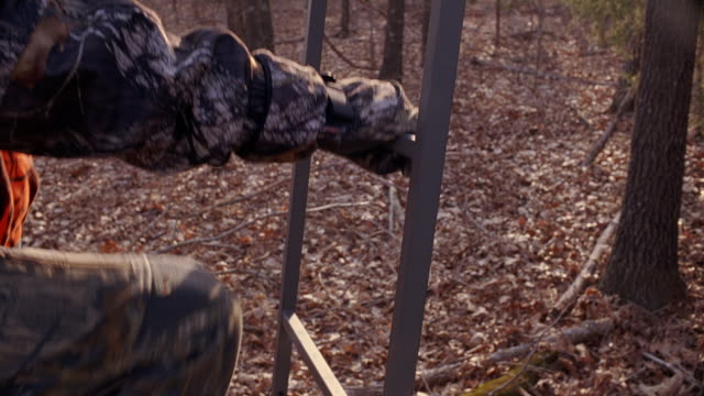Closeup of a hunter's hands and feet climbing a tree deer hunting stand in a forest.