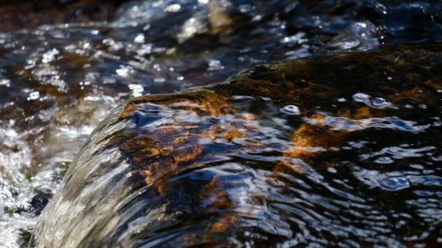close-up of a running water in a stream in the spring in clear light - running water stock videos & royalty-free footage