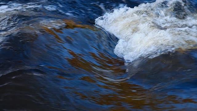 stockvideo's en b-roll-footage met close-up of a running water in a stream in the spring in clear light - scandinavisch schiereiland