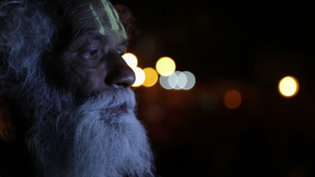 Close-up of a sage, Haridwar, Uttarakhand, India