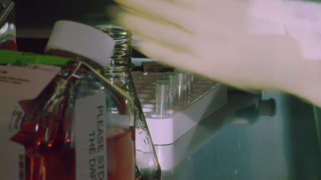 closeup of a scientist moving liquid with a pipette between bottles in a biomedical laboratory whilst researching vaccines for mers uk - biology stock videos & royalty-free footage