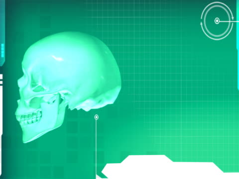 vídeos y material grabado en eventos de stock de close-up of a skull rotating - ilustración biomédica