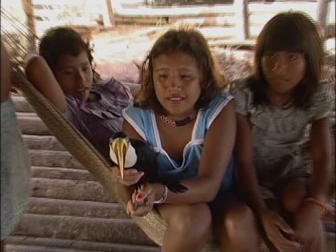 vídeos de stock, filmes e b-roll de close-up of a teenage girl holding a bird with her sister sitting in a hammock - grupo mediano de animales