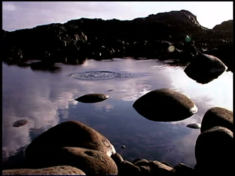 Close-up of a tidal pool as a rock is thrown in causing ripples around rocks.