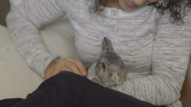 Close-Up of a Woman Holding a Cute Little Bunny