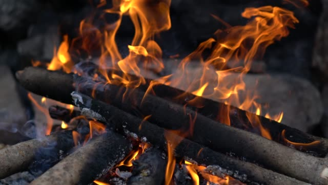 close-up of a wood fire burning - log stock videos & royalty-free footage
