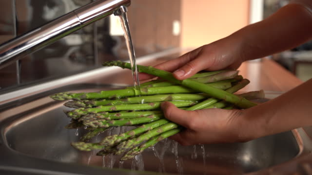 close-up of adult woman washing asparagus - asparagus stock videos & royalty-free footage